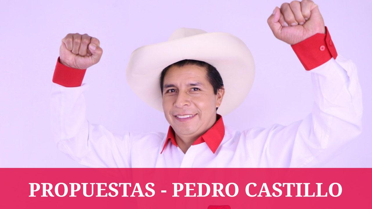 PROPUESTAS PEDRO CASTILLO